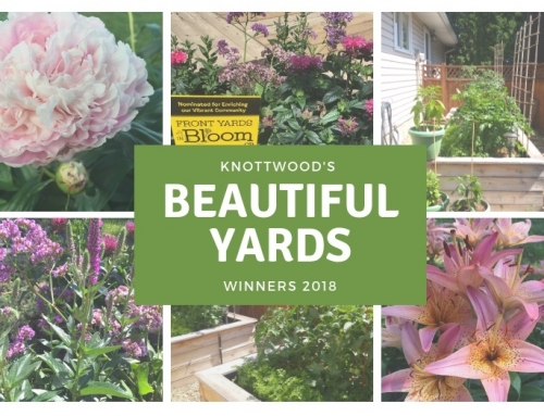Beautiful Yards Contest Winners