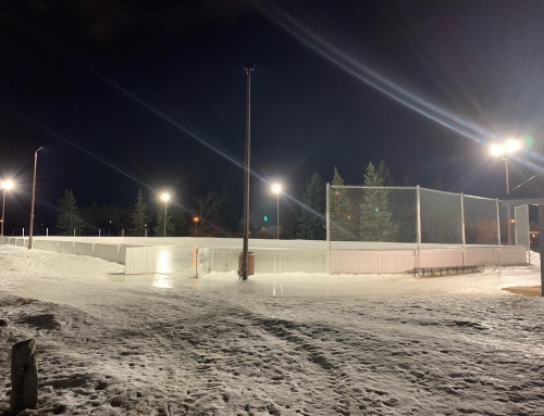 Ekota Rink Closed for the season